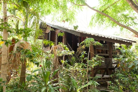 guest house in the trees  - Rumah