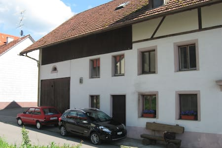 Farmhouse half hour from Zurich - Casa
