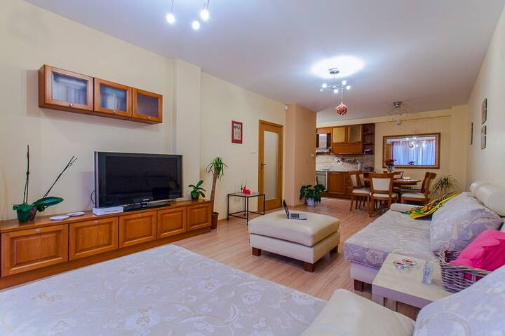 Wonderful modern apartment