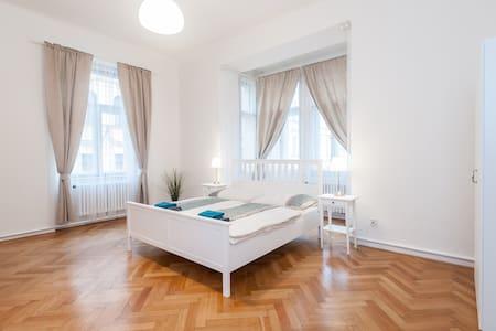 Central Old Town Square Apartment 2 - 布拉格 - 公寓