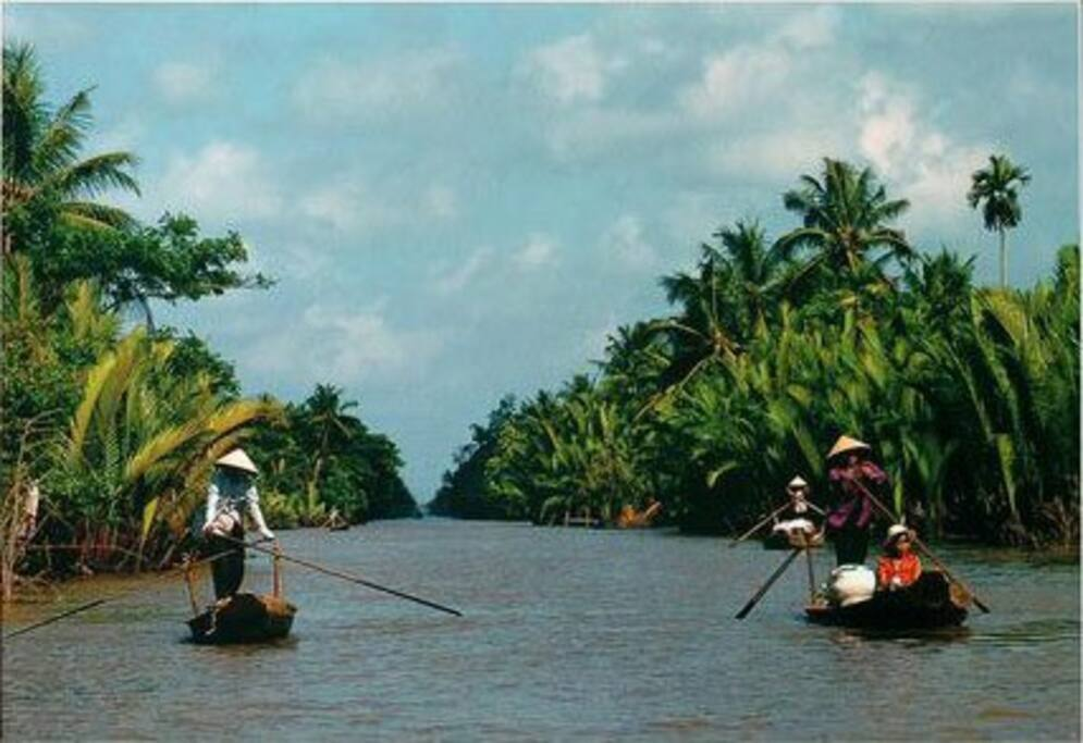 Join Group Tour to Mekong Delta