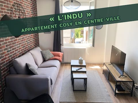 Appartement cosy situé en centre-ville (Indu)
