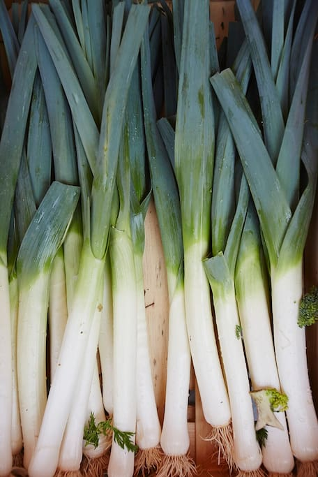 Leeks at nearby Riberac Market
