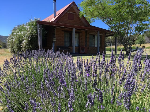Lavender Abode, Private cottage, Valley views. - Bright - Cabin