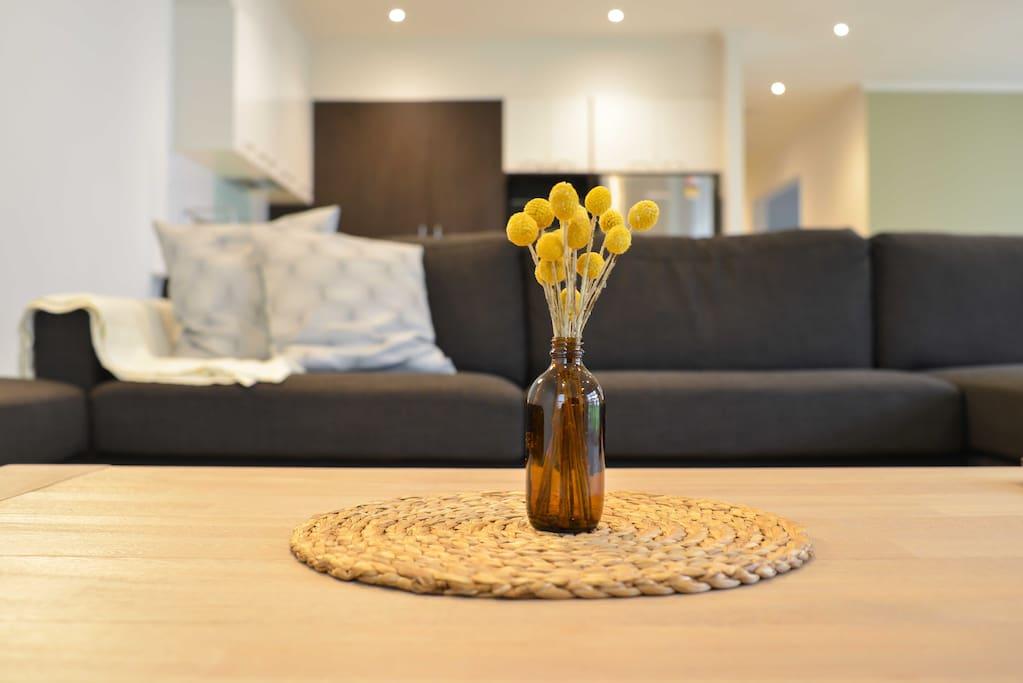 Scandinivian style Living Area