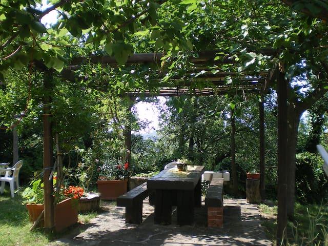 B&B Albachiara - Casa di Campagna - Ogliastro Cilento