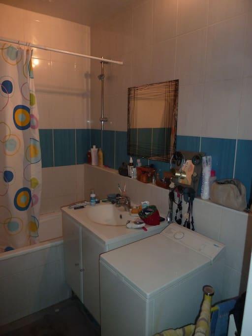 SDB avec baignoire et lave linge.