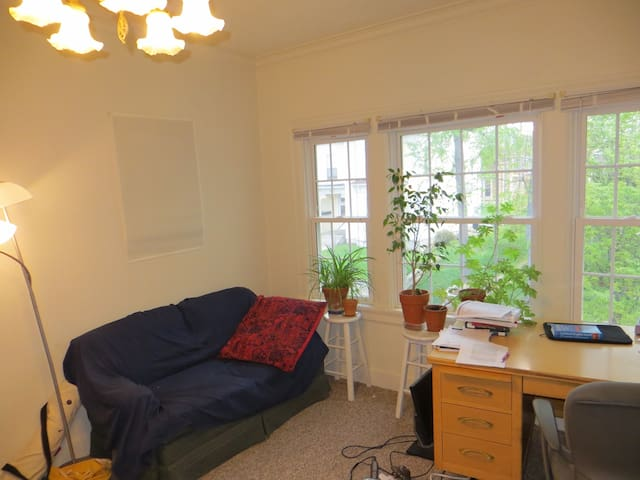 Beautiful Summer Sublet in Downtown - Bloomington - Wohnung