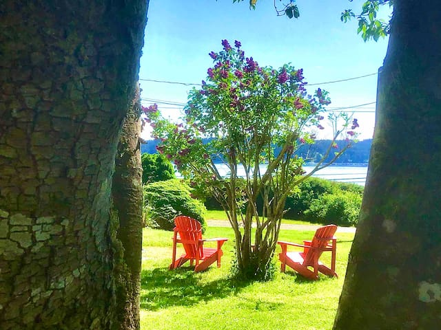 Union Bay Getaway Suite . Across from the beach.