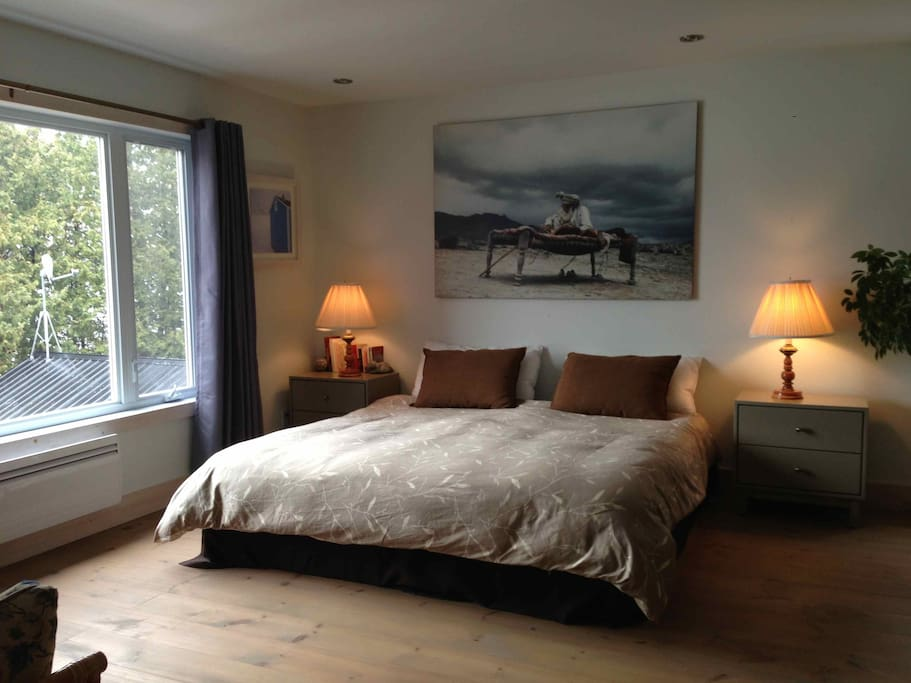 Large Guest Bedroom with private bathroom