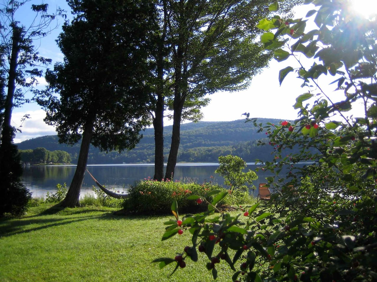 Front yard facing the lake in summer