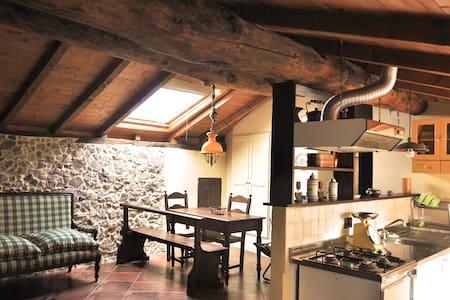 Ampia mansarda in palazzo del '600 - L'ago - 公寓