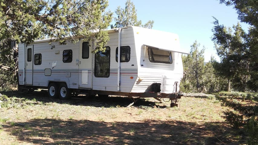 RV in the woods, spacious and private