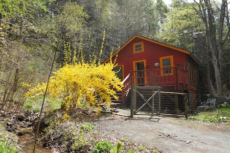 Little Red Cabin on a Hill - Phoenicia - Casa