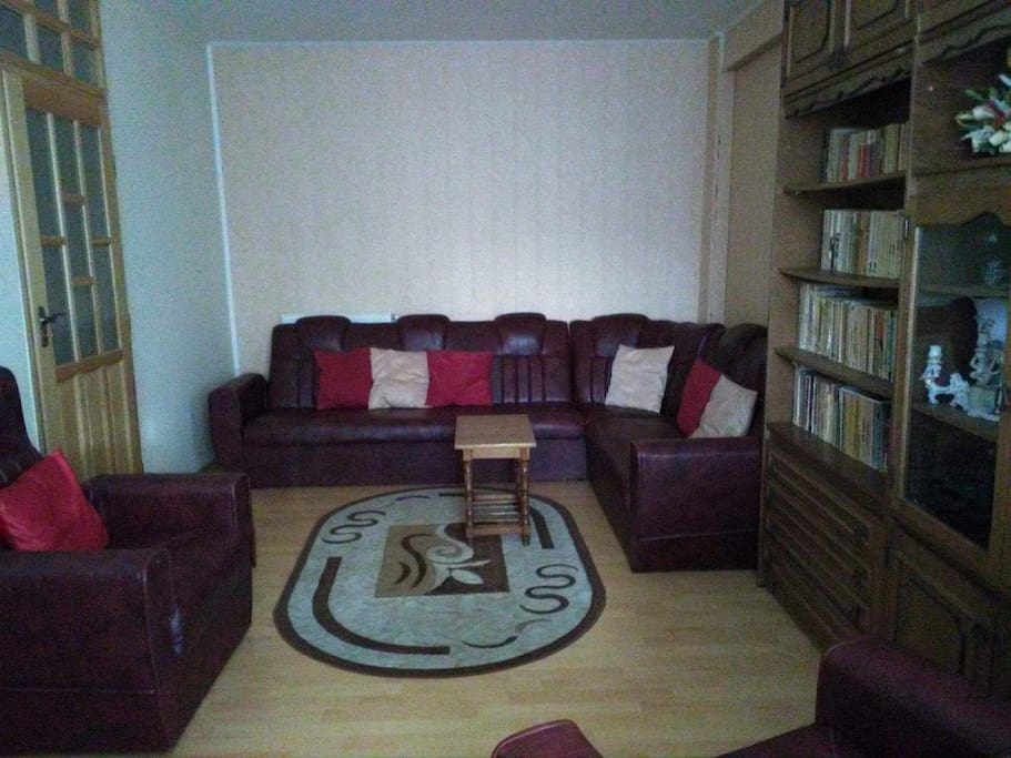 Living room (extendable sofa bed for 2 people)