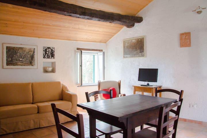 Ferienwohnung bei Alassio - Marmoreo (Casanova Lerrone) - Apartment