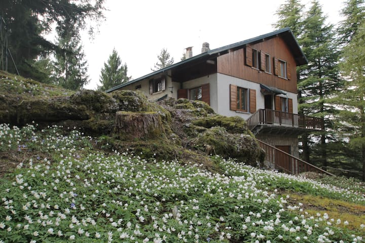 Villa Pezzotta - Castione della Presolana - Casa de férias