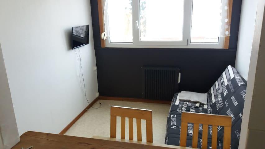 T1 2 pièces 3 couchages entièrement équipé/ garage - Belfort - Appartement