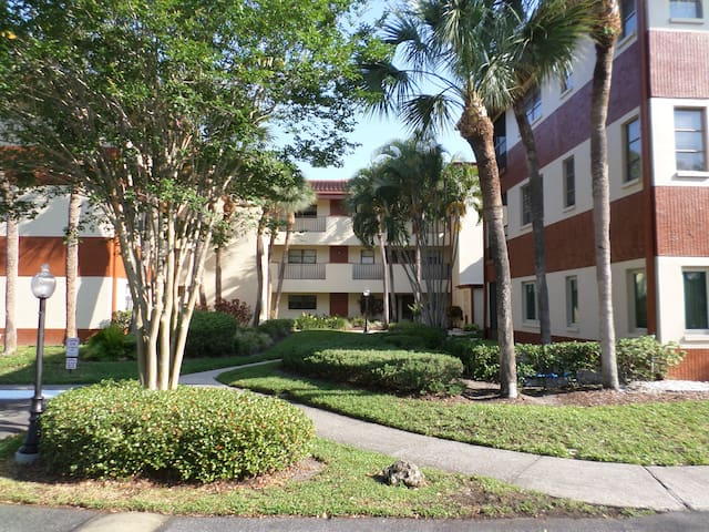 Clearwater, Tampa and St Petersburg - Clearwater - Condominio
