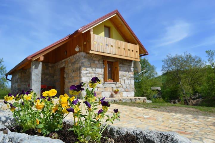 Guest house Emanuela - Pavlovac