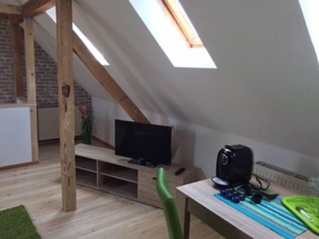 Modernes Dach - Appartement