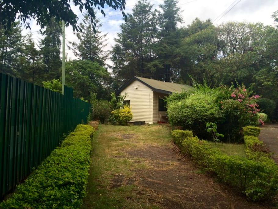 Vintage Wooden Guest Cottage! A little beauty with lots of privacy & it's own parking space.