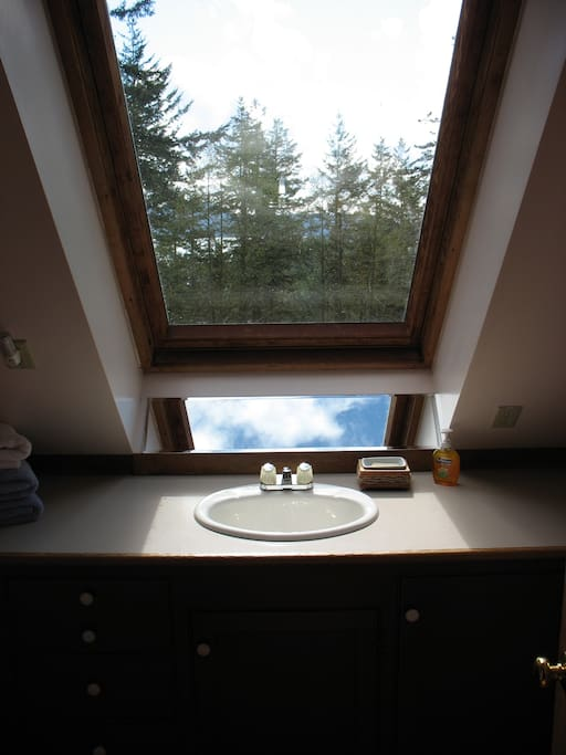 View from the bathroom skylight.