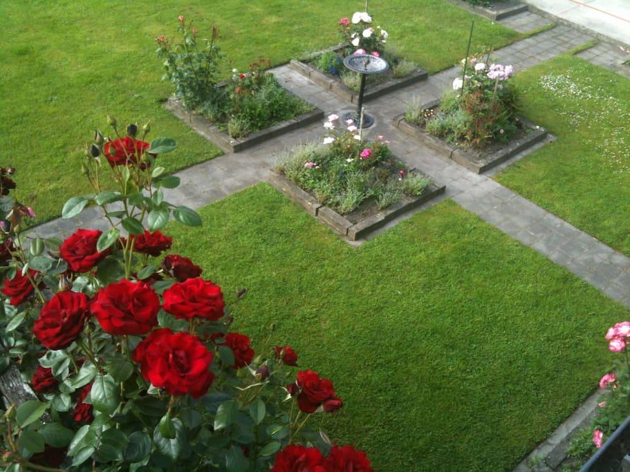 The Vista room overlooks the main rose garden