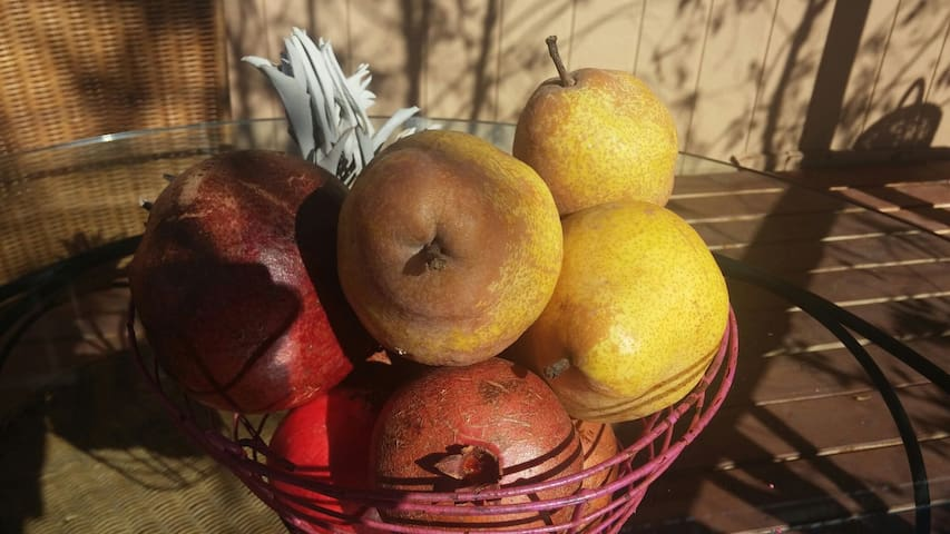 Your breakfast includes delicious fruits from our orchard.