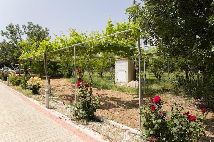 Eliofos Luxury Villa - Private Pool, BBQ, Wifi