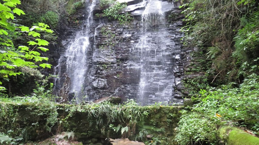 Waterfall Cottage -Silver Birch- Hogrock Falls