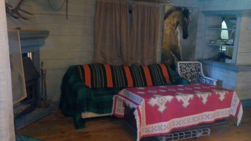 HABITACION ENTRE PINOS - Hoyos del Espino - Apartment