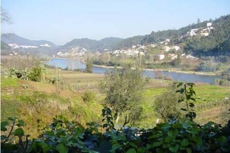 River House - Mondego River - Penacova - Σπίτι