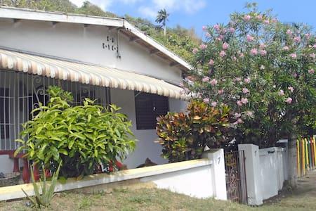Buschman Homestay - Port Maria - Hus
