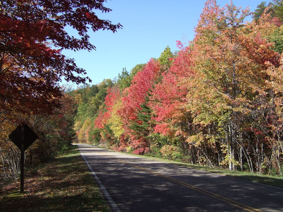 Autumn on Foothills Parkway, just above our place
