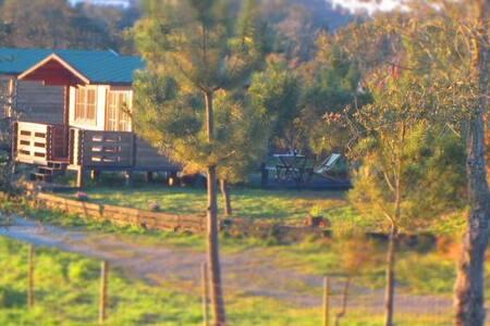 casas de madeira perto da praia - Vila Nova de Milfontes
