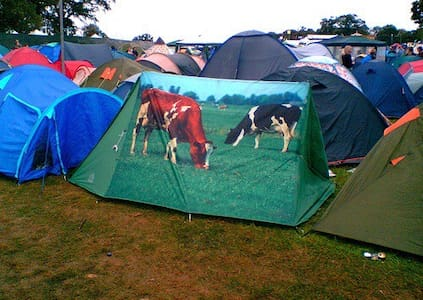 Cow Tent - Jordan Valley