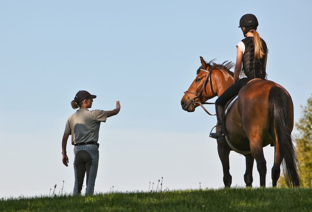Instruction at this equestrian center is first rate and its dedicated staff  share their knowlege and enthusiasm.