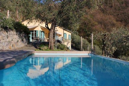 Villa, pool, seaview in olive grove - Moneglia - Villa