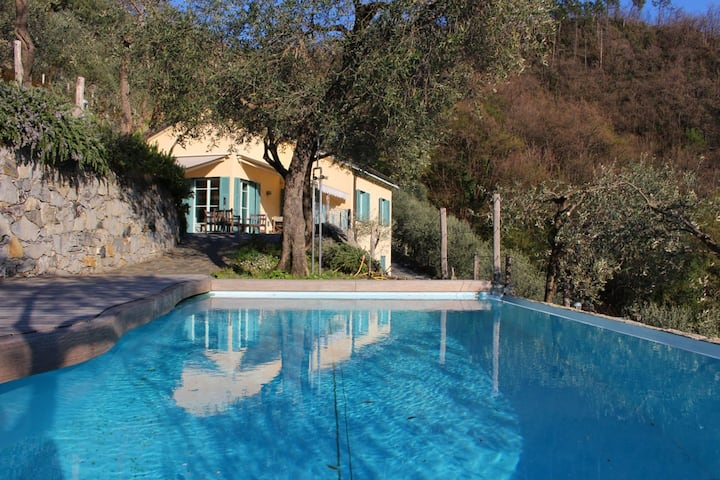 CinqueTerre in villa, pool, seaview in olive grove