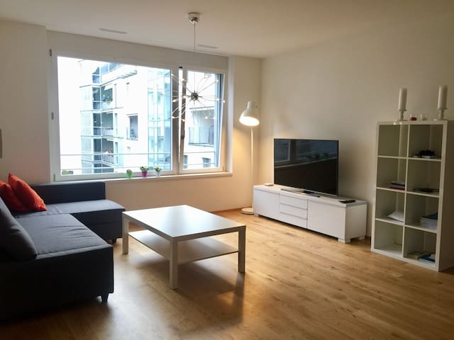 Brand new flat 5' from lake - Zürich - Appartement