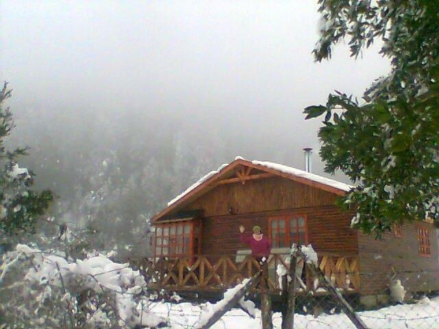 Cabañas equipadas para seis personas. Comodidad. - Pucón - Blockhütte