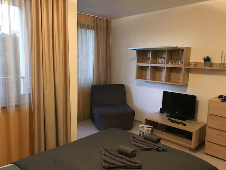 Cosy and spacious studio near Borovets center