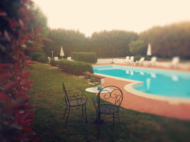 Nel parco splendida piscina a sale ionizzato