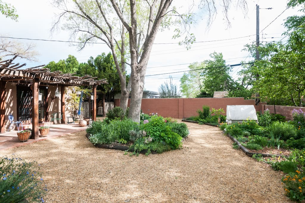 backyard stays cool with large shady trees
