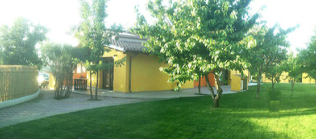 I Ciliegi B&B room 1 - Santa Maria Coghinas - Bed & Breakfast