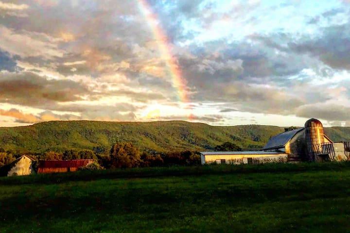 Modernized Farmhouse with Mountain Views