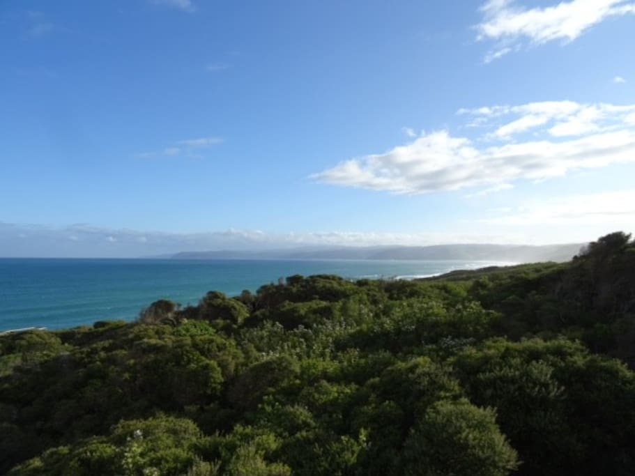 View from Split Point Lighthouse to Lorne