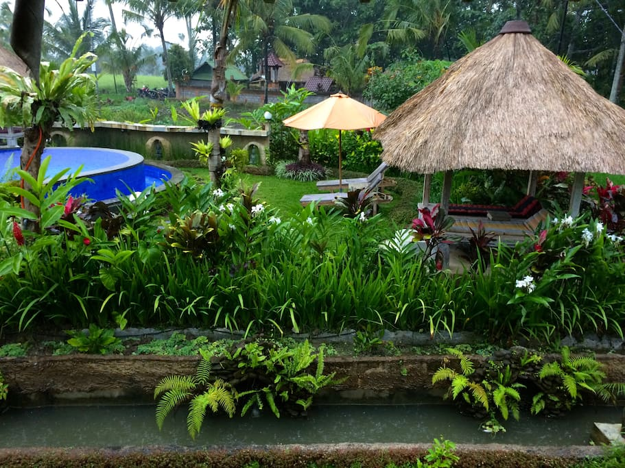 Enjoy a dip in the pool amongst the rice fields