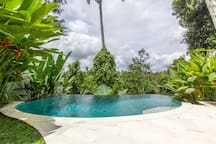 Spacious pool area with gorgeous hand-tiled infinity pool overlooking the valley.